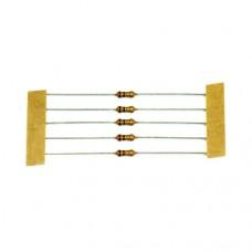 1Ω Ohm Resistor (1/4 Watt)